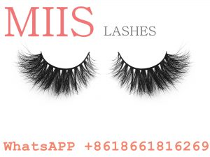 bed camellia lashes